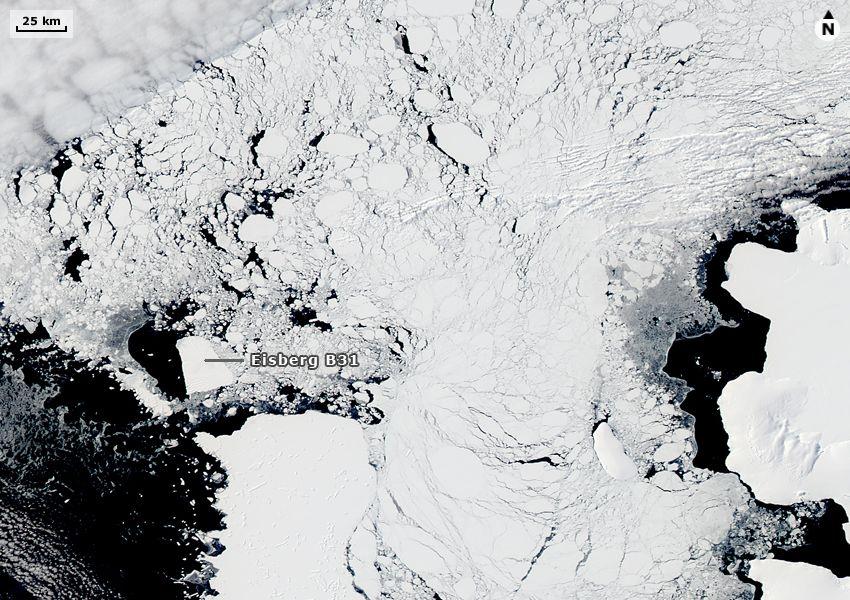 Satbild der Woche Eisberg B31