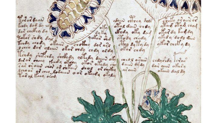 Voynich-Manuskript: Was steht da?