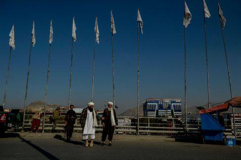 Talibankämpfer vor Talibanflaggen in Kabul