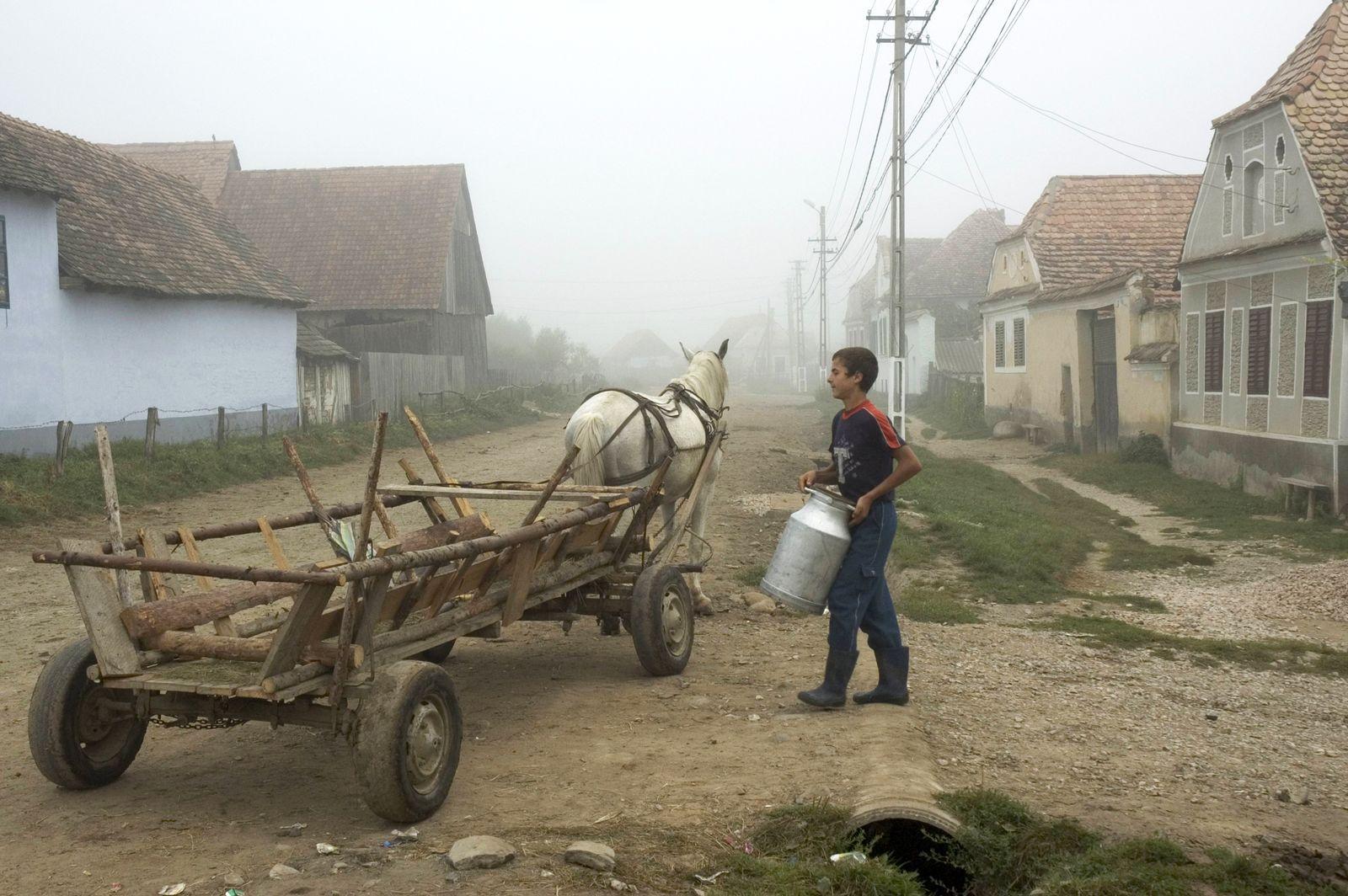 EINMALIGE VERWENDUNG Viscri-Dorf / Rumänien / Armut Europa