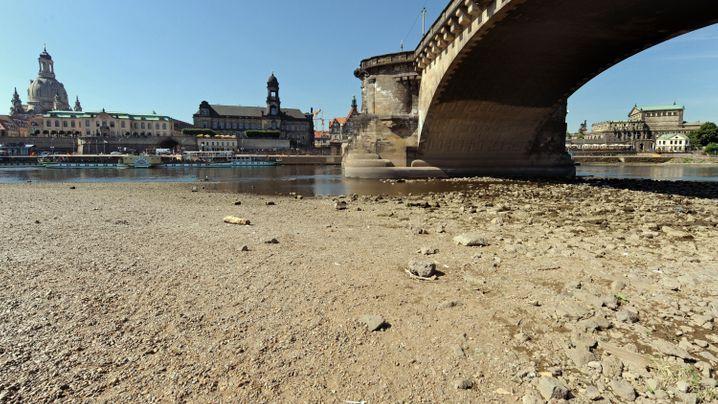 Sommermärchen Reloaded: Zwischen Sonne und Wasser