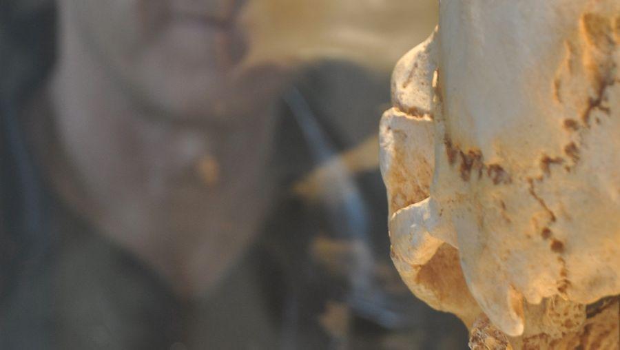Forscher Michael Hammer: Hinweise auf frühmenschliche Kreuzungen entdeckt