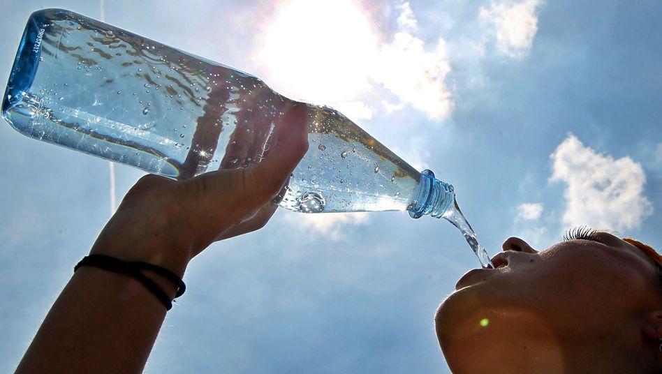 Hitzedurst: Lebenswichtiger Flüssigkeitshaushalt