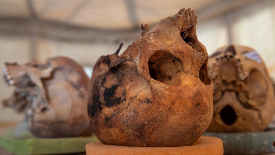 Wissenschaftler entdeckten auch rund 2500 Jahre alte menschliche Überreste