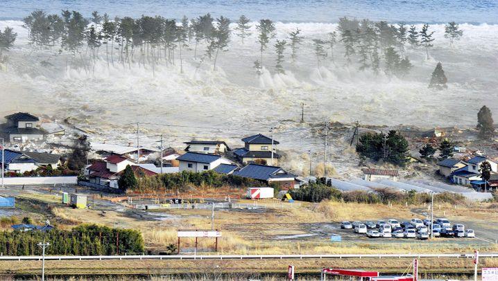 Photo Gallery: Mass Destruction in Japan