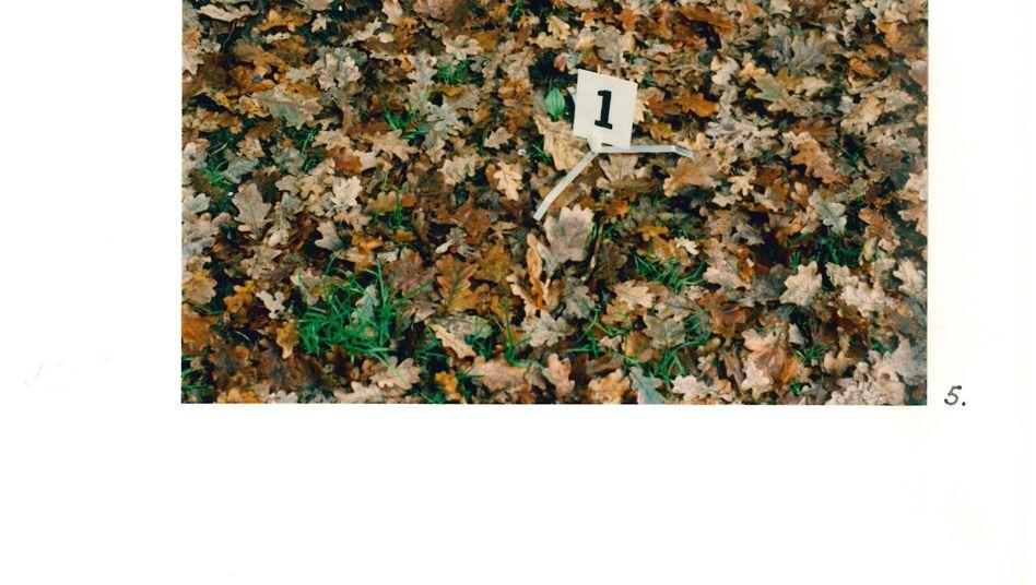 Beweismaterial in einem Wald bei Venlo 1998