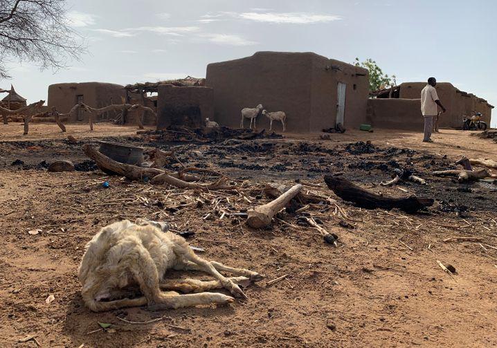 Tatort Mali: Ein Dorf der Dogon-Volksgruppe nach dem Überfall