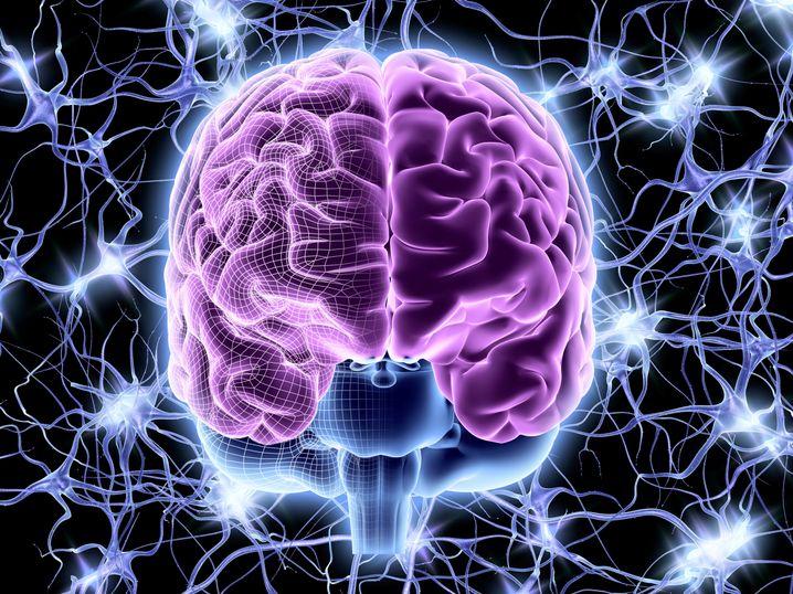 Gehirn: Wie gut verstehen Computer menschliche Sprache?