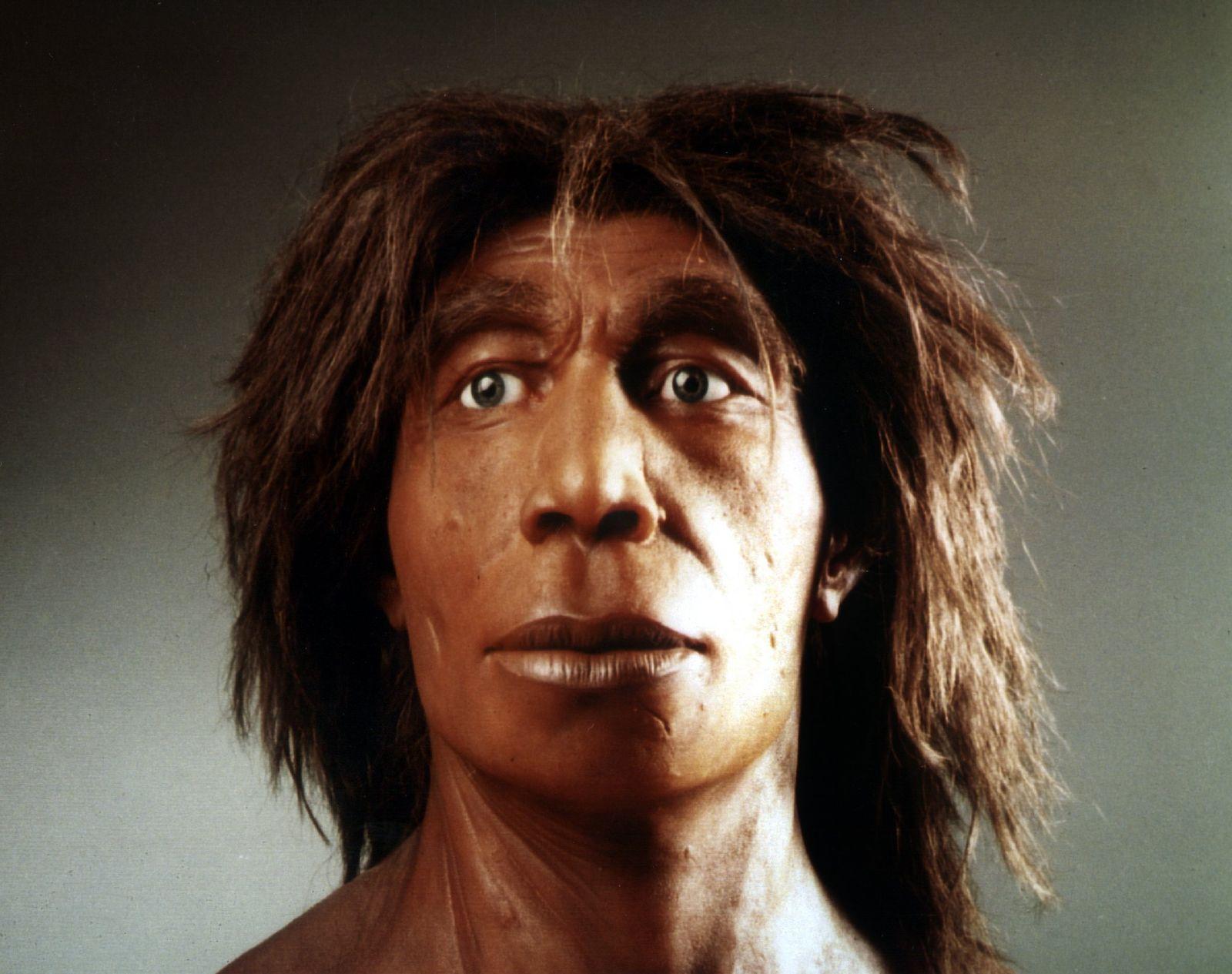 Rekonstruktion Neandertaler