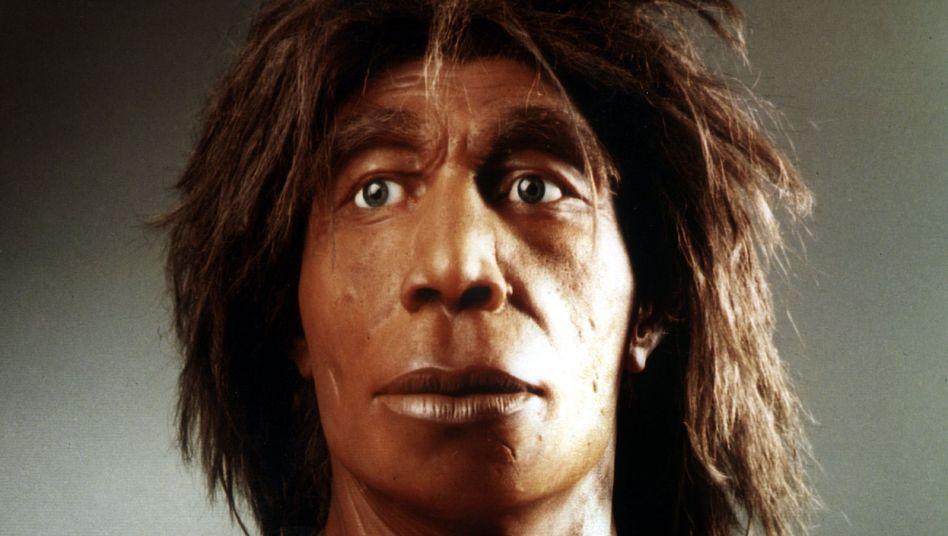 Neandertaler: Mehr Testosteron-Kontakt im Mutterleib?
