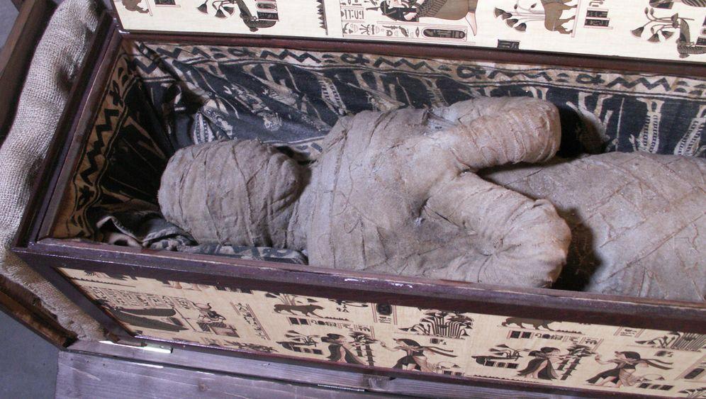 Diepholzer Mumie: Der Plastikschwindel