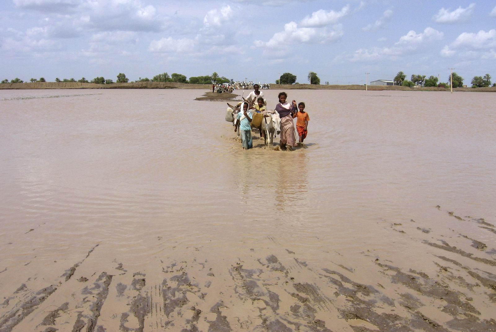 Cholera / Afrika / Epidemie