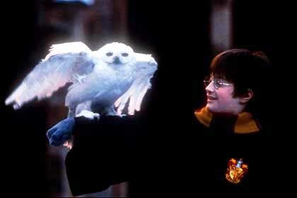 Schauspieler Radcliffe als Harry Potter: Viel zu gutaussehend?
