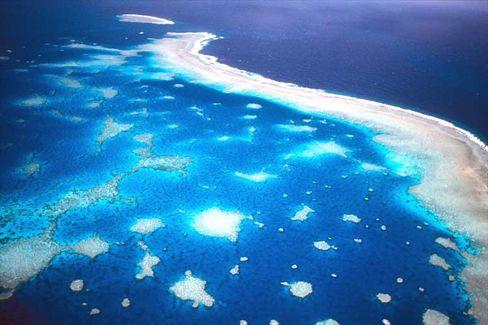 Luftaufnahme des Great Barrier Reef vor der Küste Australiens: Heute steht nicht einmal ein Prozent der Meeresfläche unter Schutz