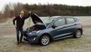 Ford Fiesta - der Umzugswagen