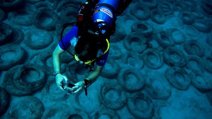 Verschmutzung der Meere: Ozeane verkommen zu Müllhalden