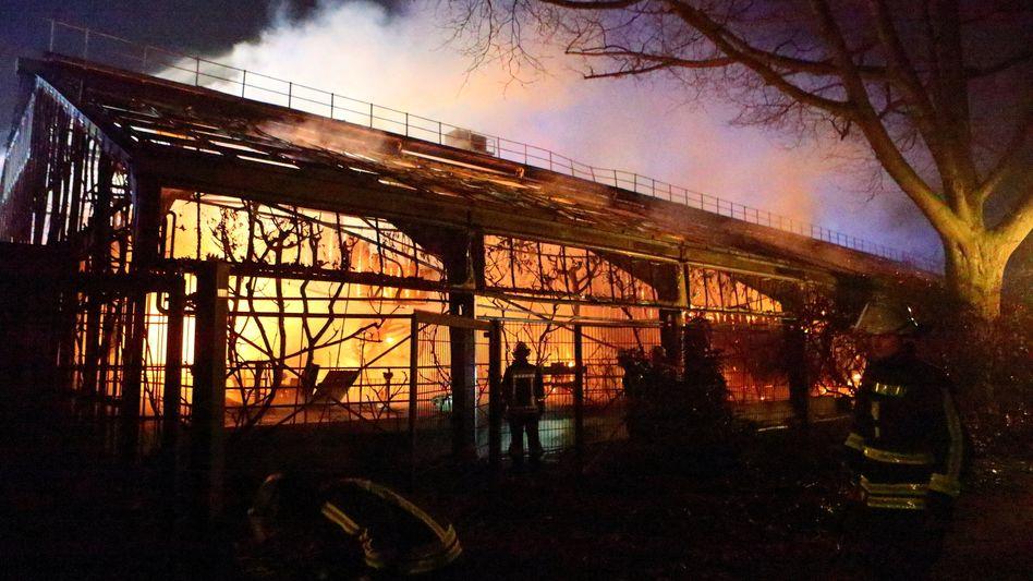 Feuer im Affenhaus im Krefelder Zoo in der Silvesternacht 2019/2020