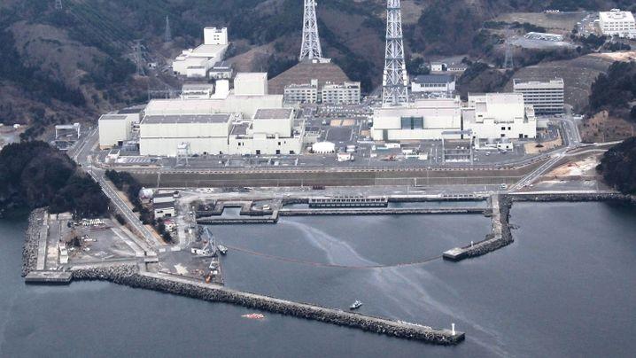 Schweres Nachbeben: Neuer Schock für Japan