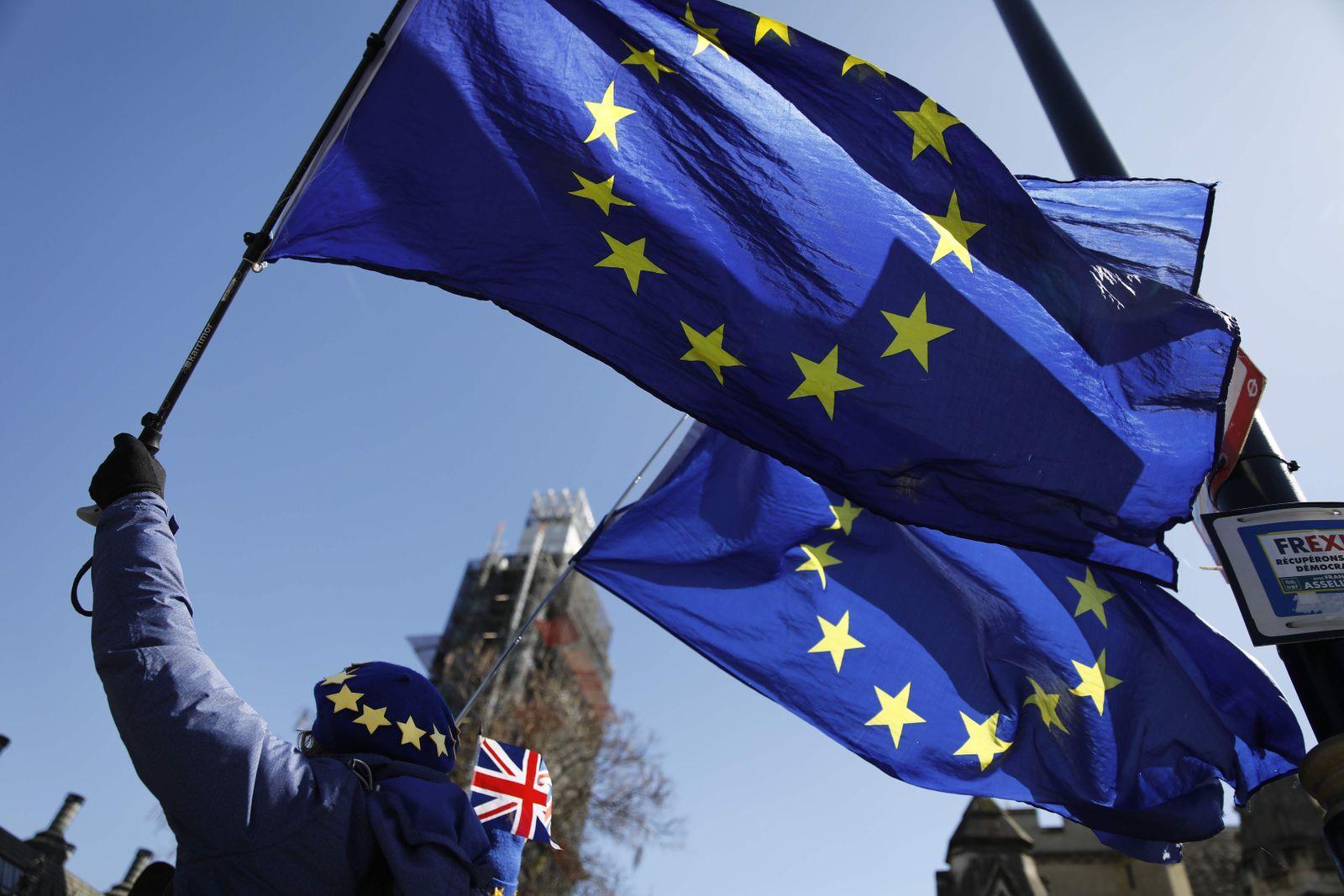 EU-Fan in London