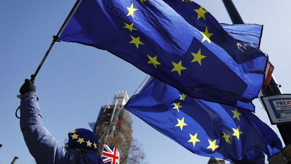 Eine EU-Anhängerin in London
