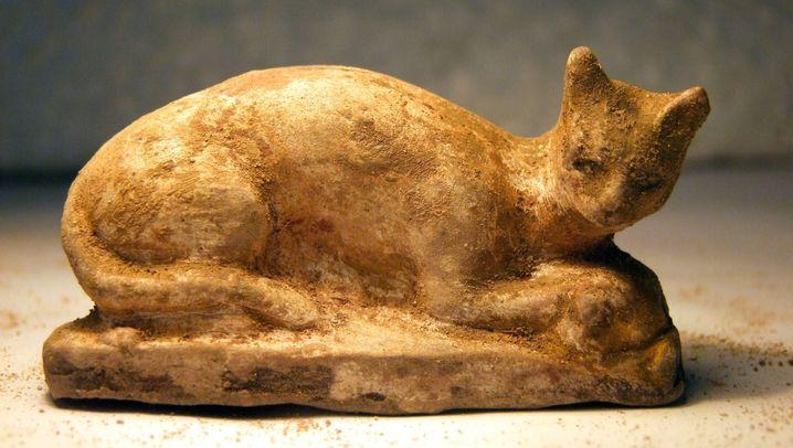 Archäologische Fundstücke: Ein Tempel für Berenike
