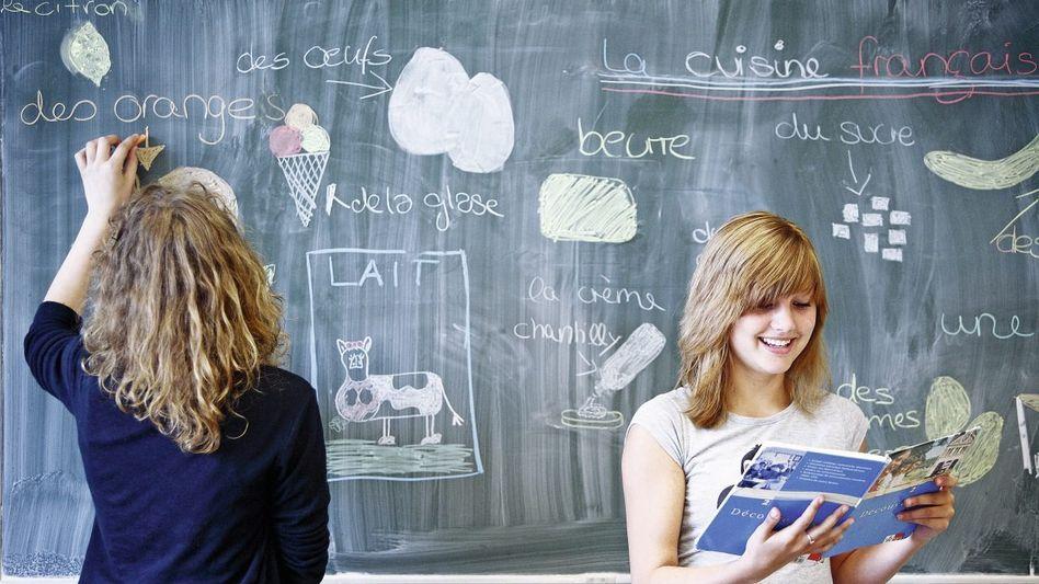 Französisch-Unterricht in einem Husumer Gymnasium: Gewisser Artenschutz