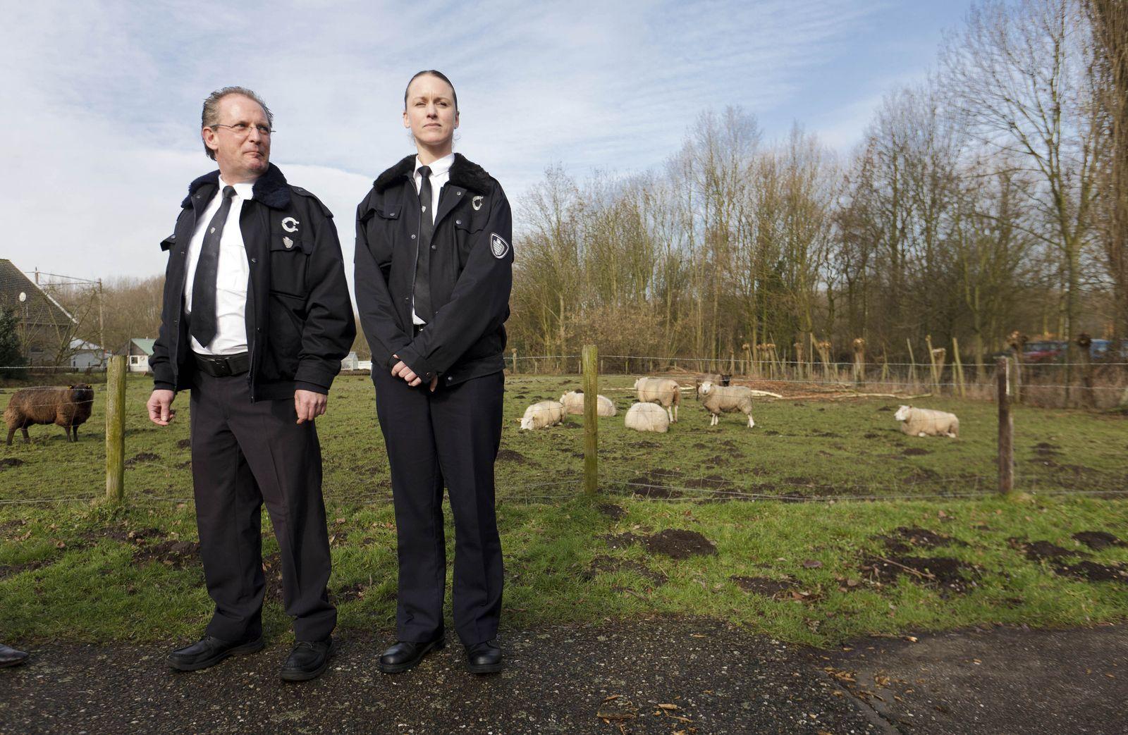 Notruf 114 für Hollands «Meerschweinchen-Polizei»