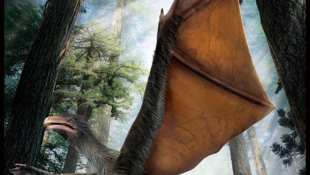 Fledermaus-Saurier Yi qi: Der Kurze mit den langen Fingern