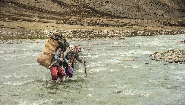 Auf über 4000 Meter Höhe: Das Leben der Changpa-Frauen