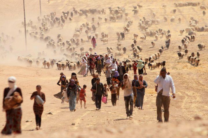 Hunderttausende Jesiden flohen 2014 Richtung syrische Grenze
