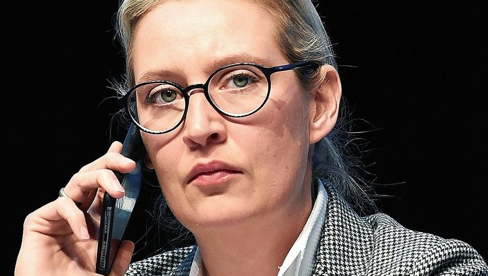 """Alice Weidel: """"Fahrlässiges Spiel mit dem Leben"""""""