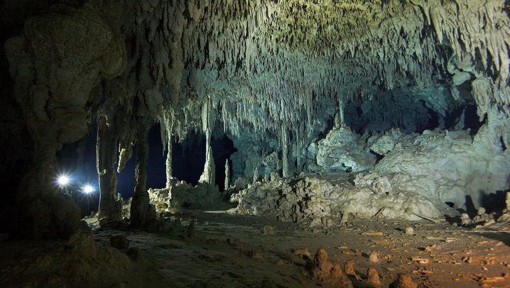 Cenoten: Die bizarre Unterwelt der Maya
