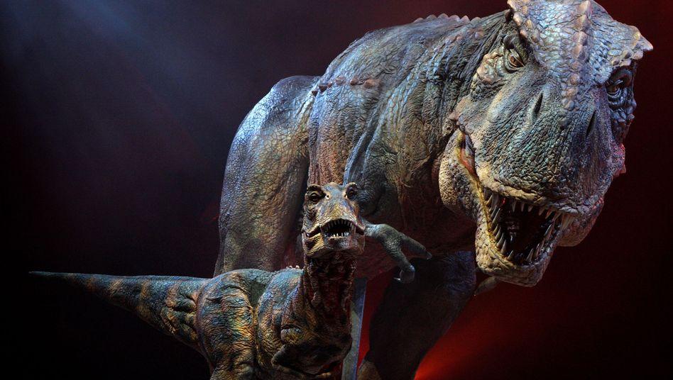 """T-Rex: """"Ausgewachsen"""" kein passendes Konzept"""