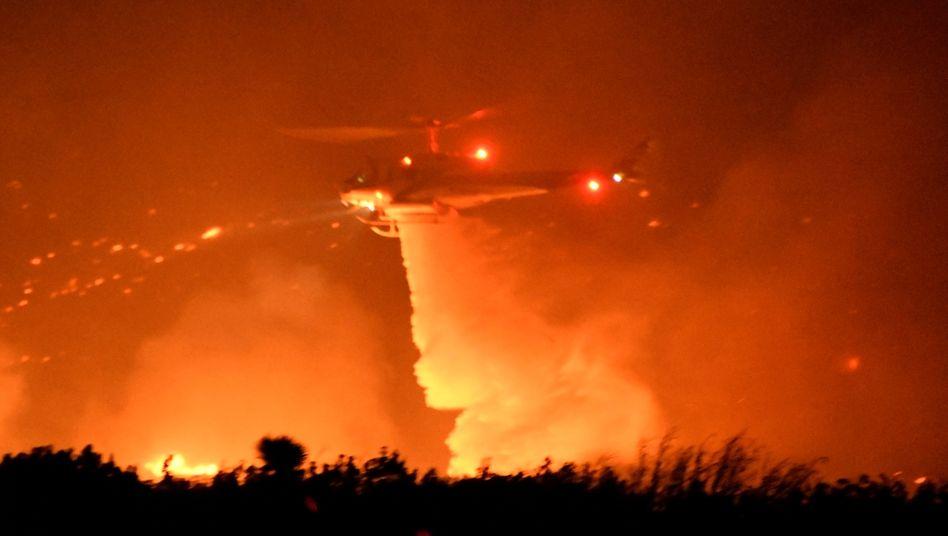 """Helikopter werfen Löschwasser über den Bränden des """"Bobcat""""-Feuers in den Bergen nördlich von Los Angeles ab"""
