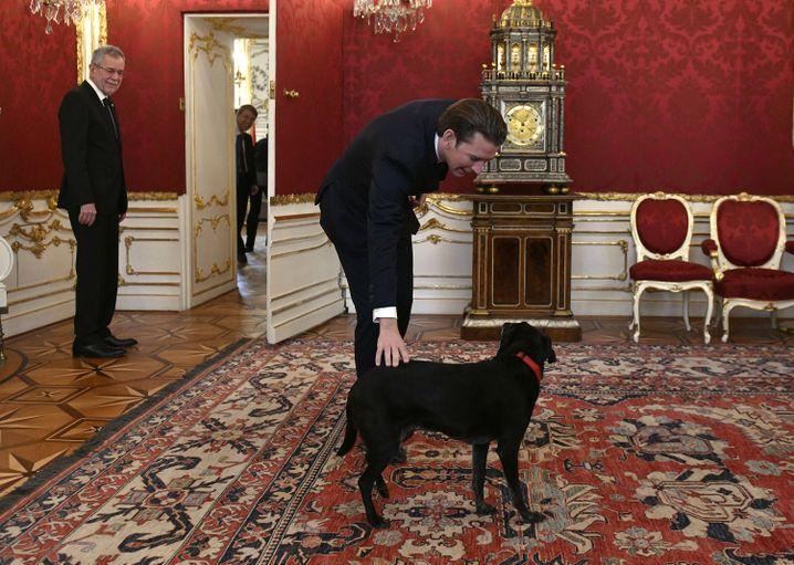 Sebastian Kurz (rechts) bei Bundespräsident Alexander Van der Bellen (und dessen Hund Kita)