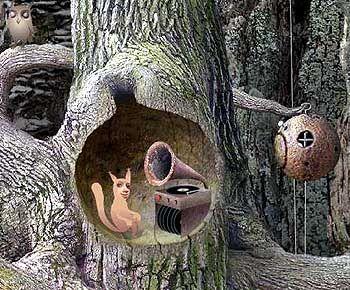"""""""Eichhörnchen"""" als DJ, Gnom in der Taucherglocke: Wie bekommt man den da nur raus?"""