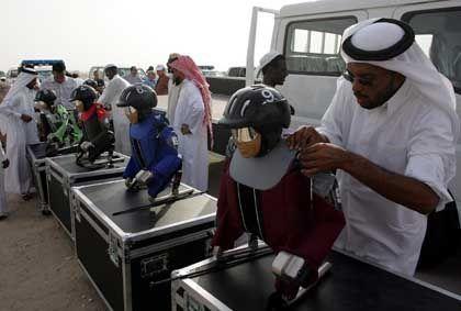Qatari men prepare a robotic camel jockey.
