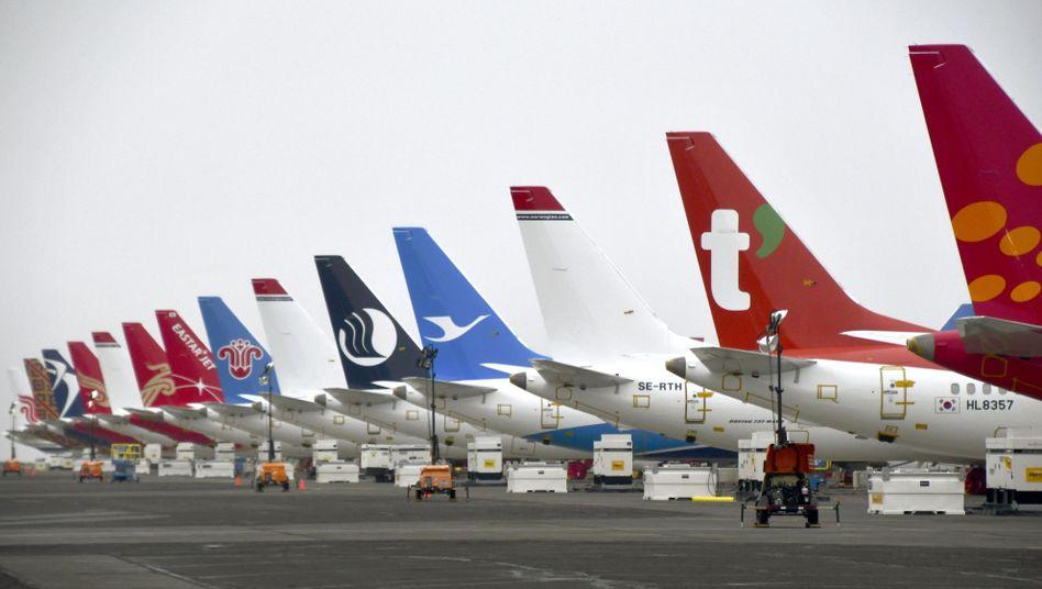 Boeing 737 Max auf einem Flughafen im US-Bundesstaat Washington: Der Druck auf den Konzern wächst