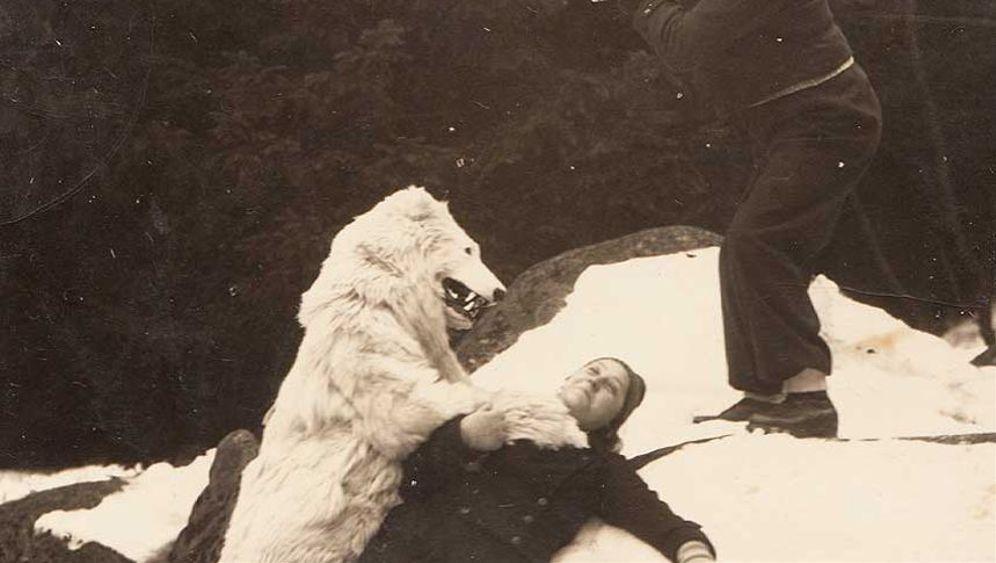 Historische Eisbärenfotos: Ein Eisbär kommt selten allein