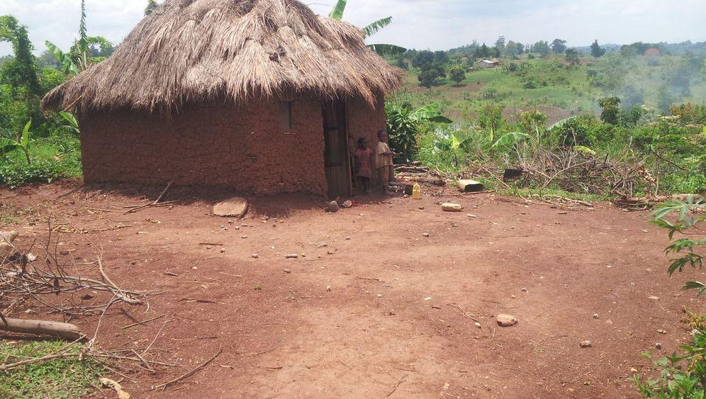 Uganda: Krank vom Acker