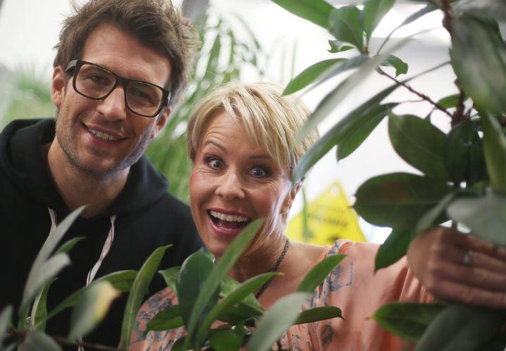 """RTL-Moderatoren Hartwich, Zietlow: Ab 16. Januar wieder im """"Dschungelcamp"""""""