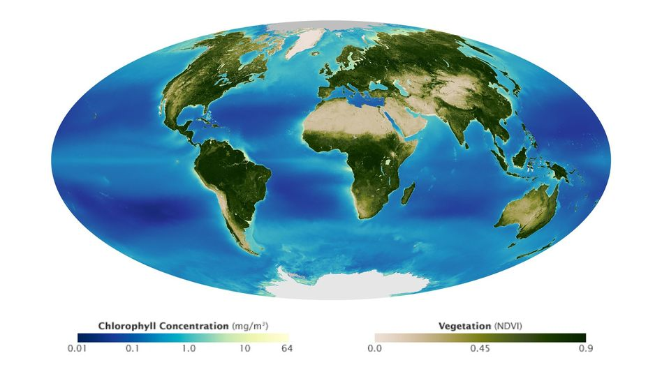 Wie HeiГџen Die Sieben Weltmeere