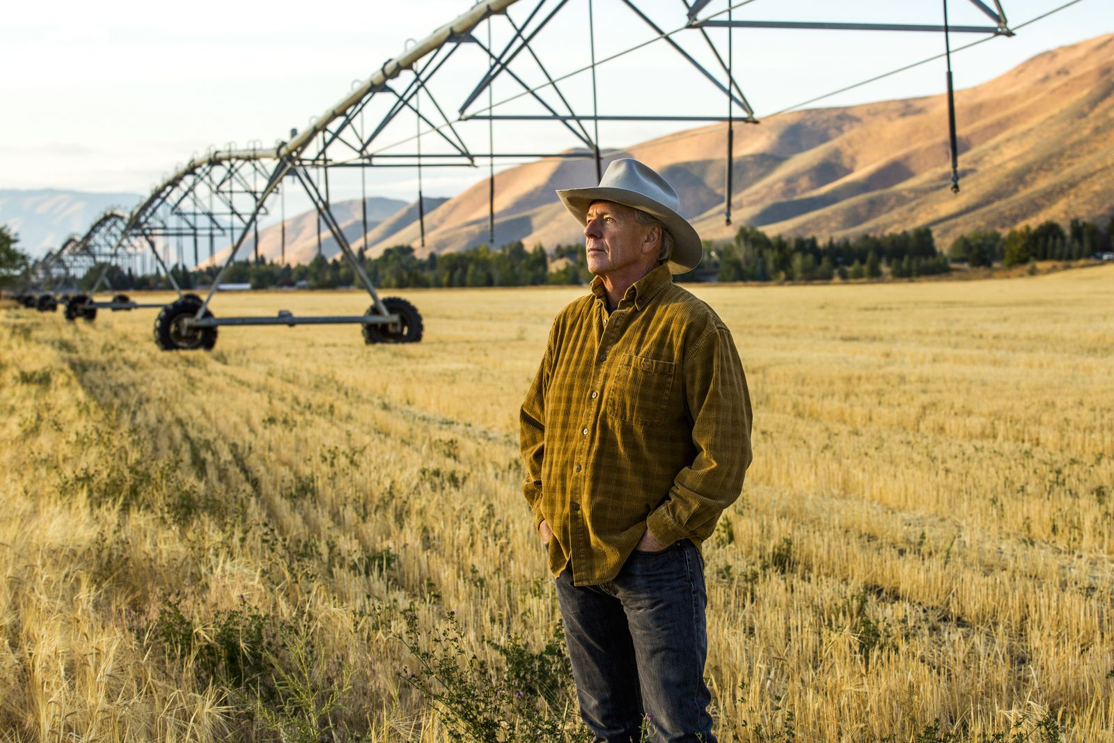 EINMALIGE VERWENDUNG USA Farmer