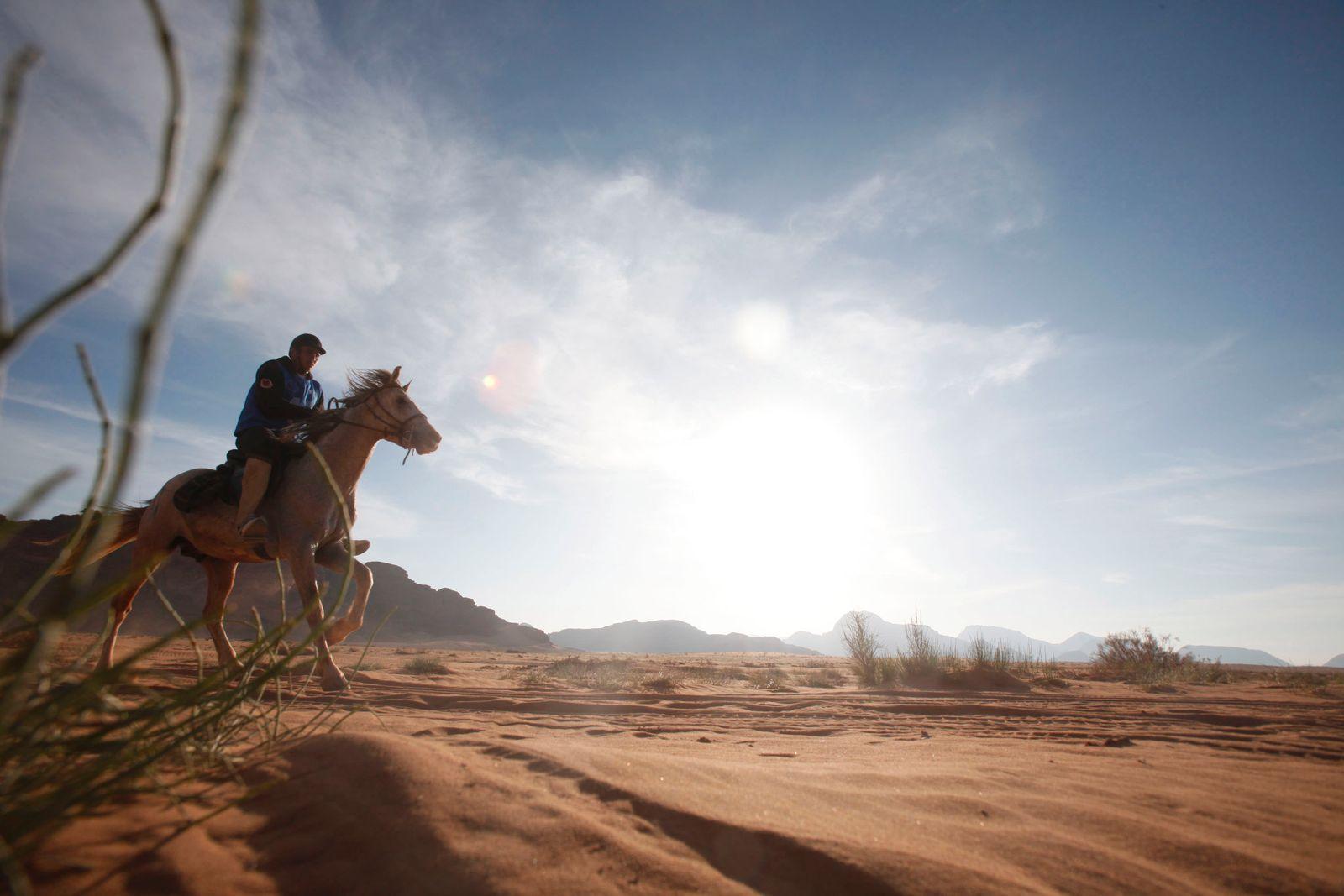 Endurance Horse Race In Jordans' Wadi Rhum