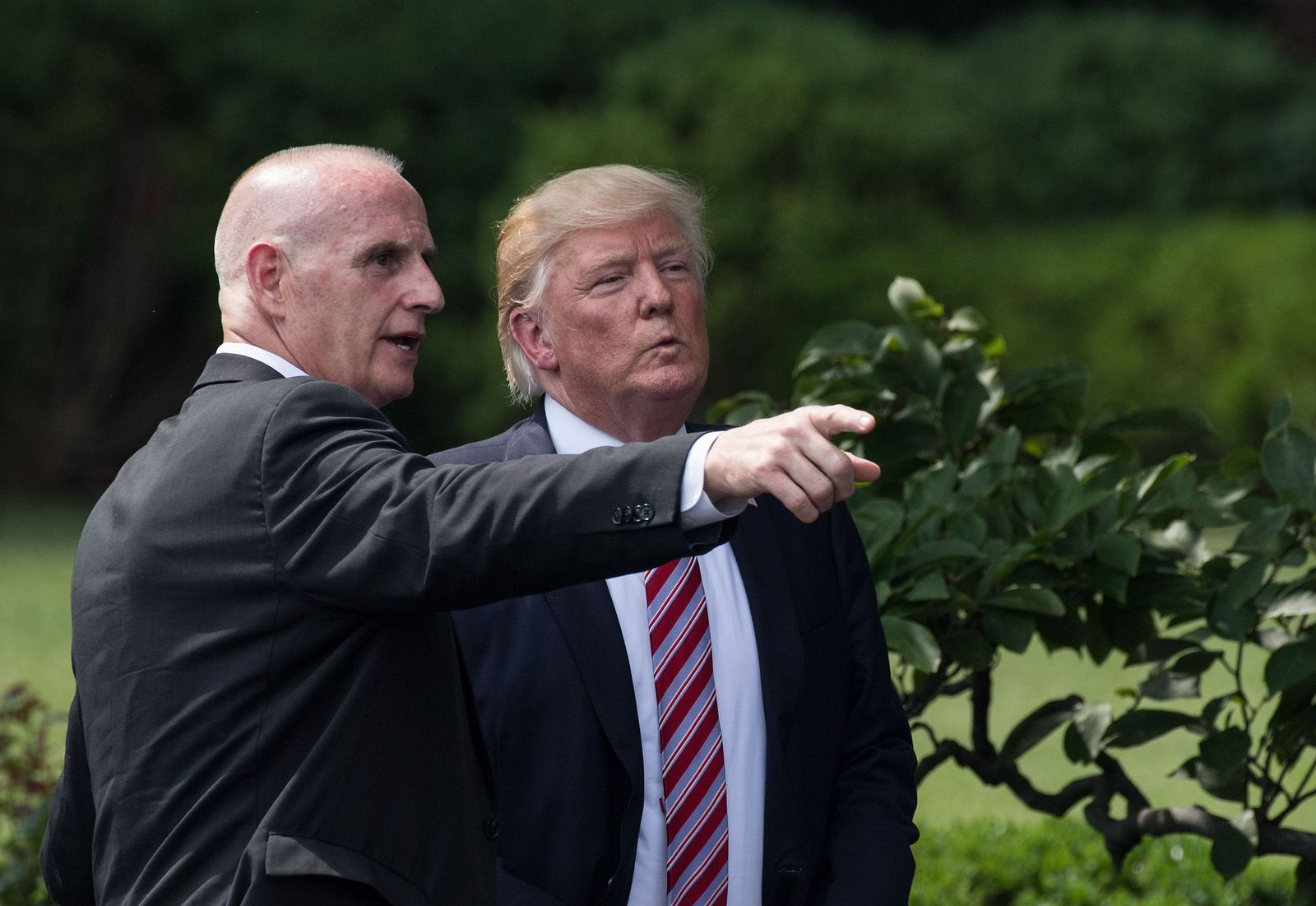 Schiller/ Trump
