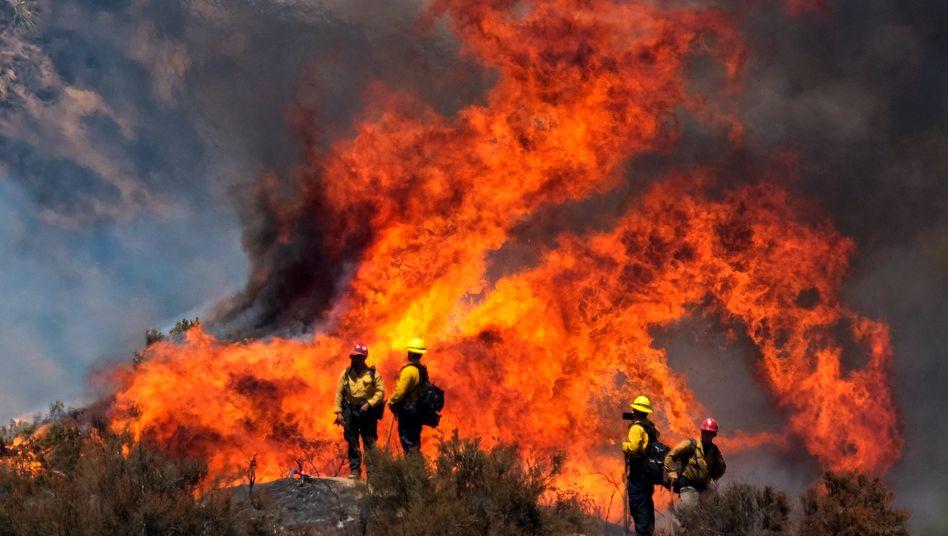 """Feuerwehrleute im Einsatz in Kalifornien: Kampf gegen das """"Apple Fire"""""""