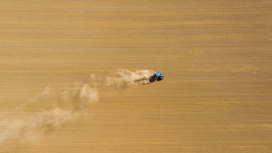 Ein Traktor auf einem Feld bei Grimma in Sachsen