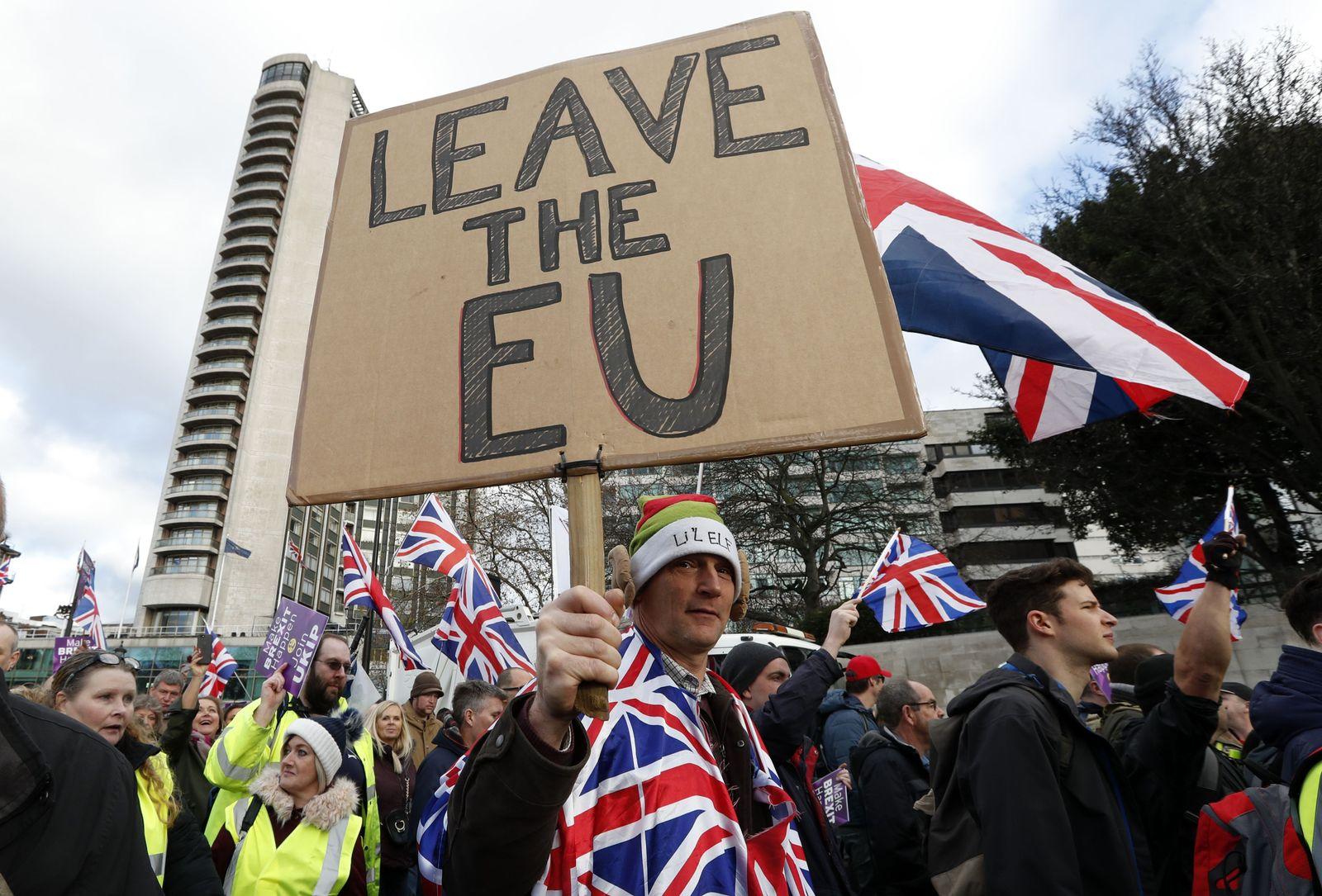 Ukip / Brexit-Befürworter