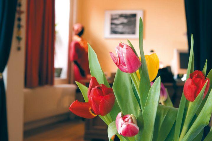 Langzeitbelichtungen mit den gleichen Einstellungen, nun aller dings mit einem Aufhellblitz, der mehr Zeichnung und Brillanz in die Blumen bringt
