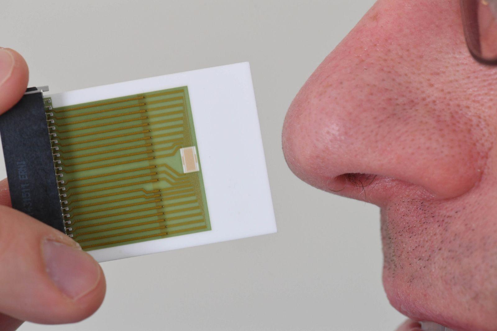 Sensor für unterschiedliche Gerüche